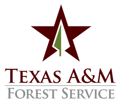 texas_A&M_forest_service.png